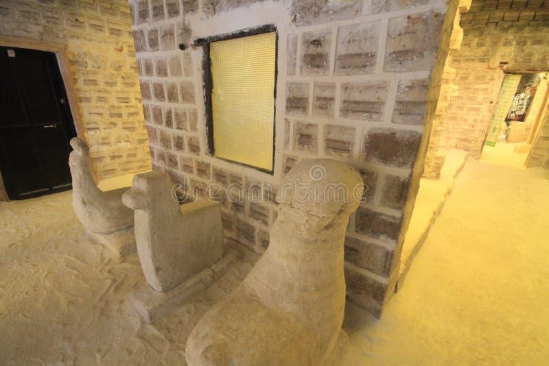 Salta skulpturer, Salar De Uyuni Bolivia royaltyfria bilder