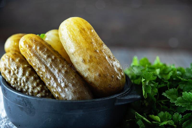 Saltade gurkor - en av den traditionella slaviska disken s?v?l som tysk kokkonst Salzgurken royaltyfria bilder
