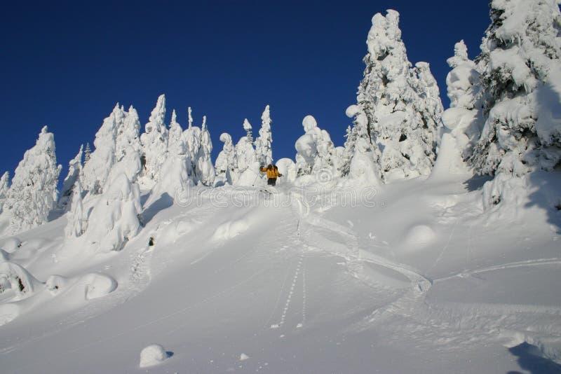 Saltando nella neve 2 immagine stock
