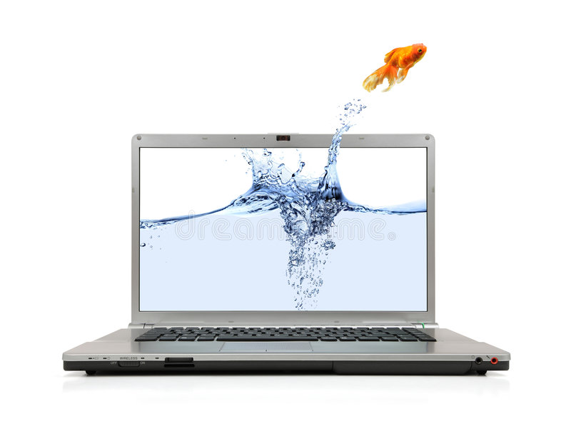 Saltar do Goldfish do portátil foto de stock royalty free