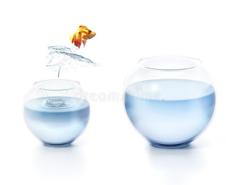 Saltar dos peixes da bacia ilustração 3D imagens de stock