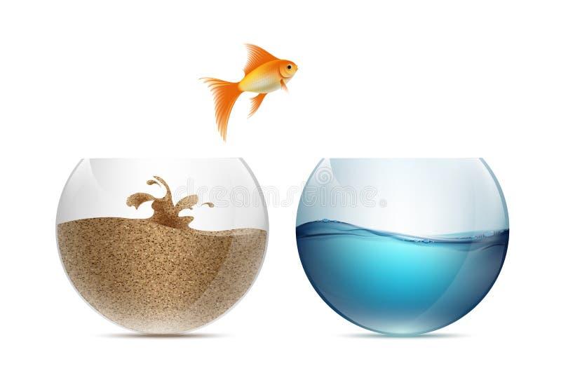 Saltar dos peixes do ouro do aquário Aquários com areia e w ilustração royalty free