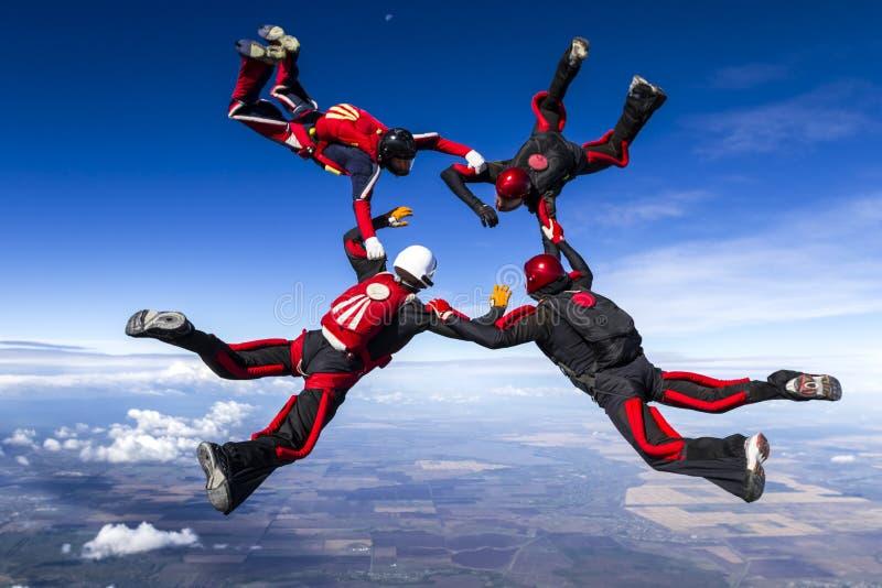 Saltar en caída libre la foto. fotos de archivo libres de regalías