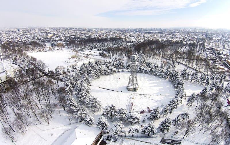 Saltar en caída libre la torre, paisaje del parque del invierno, visión aérea foto de archivo libre de regalías