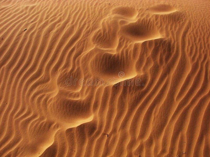 Saltato con la sabbia fotografie stock libere da diritti