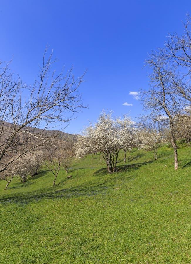 Salte en las montañas cerca del pueblo de Lahij Azerbaijan imagen de archivo libre de regalías