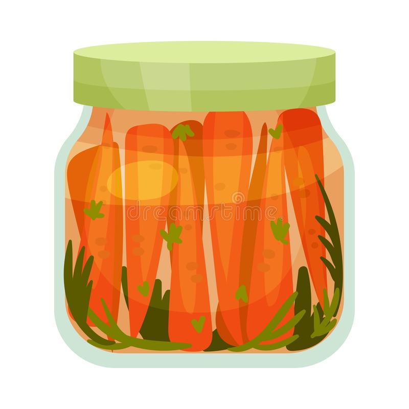 Salted carrots. Vector illustration on white background. Salted carrots in a glass jar with a green lid. Vector illustration on white background vector illustration