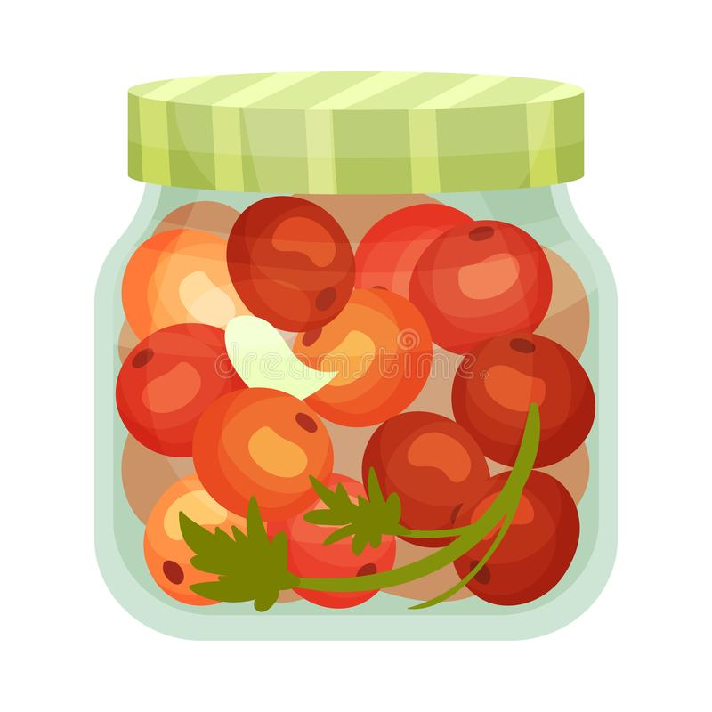 Salted cherry tomatoes. Vector illustration on white background. Salty cherry tomatoes in a glass jar with a striped lid. Vector illustration on white stock illustration