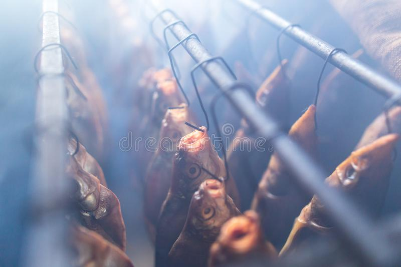 Fish smoked on hooks in smokehouse. Salted fish is smoked on hooks in the smokehouse royalty free stock photos
