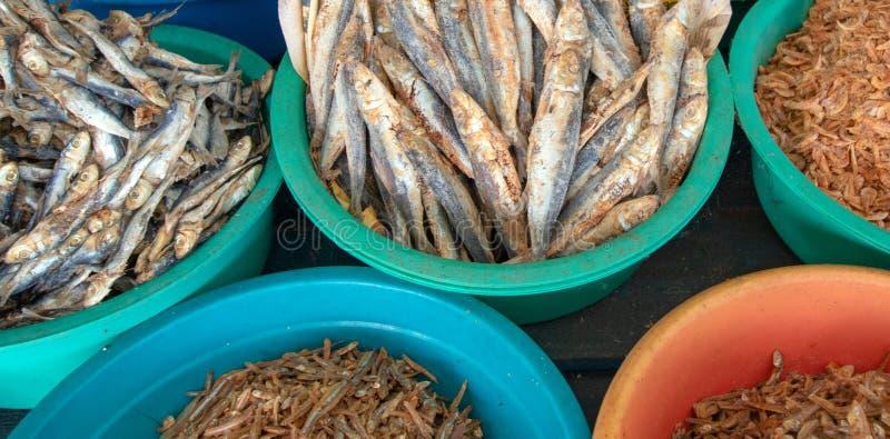 Salted ha asciugato ed essiccato le acciughe del pesce nella stalla dell'alimento nel mercato di Pettah in Colombo Sri Lanka immagini stock libere da diritti