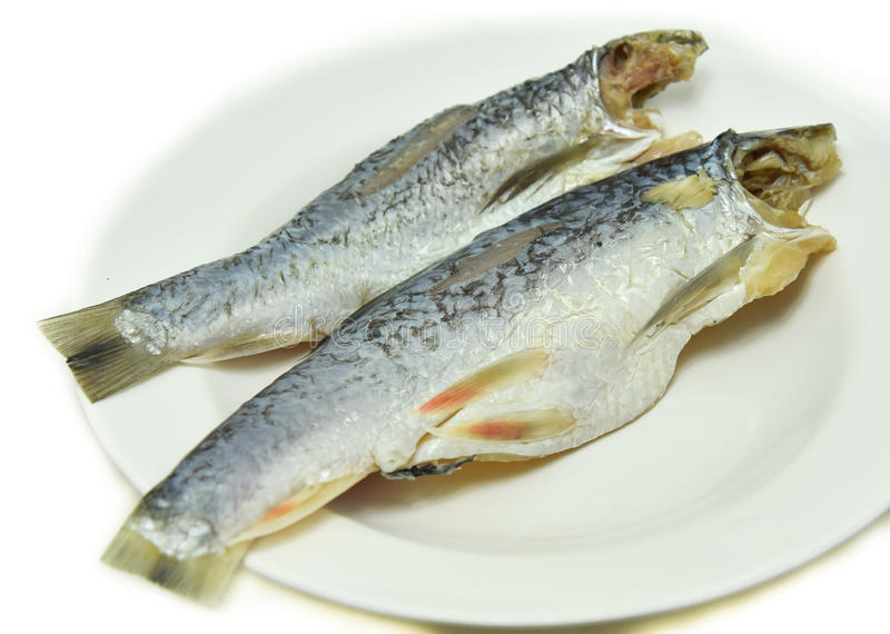 Salted herring fish. On White background royalty free stock images