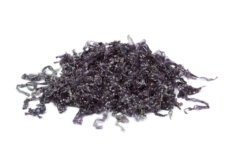 Salted Nori seaweed. On white background royalty free stock images