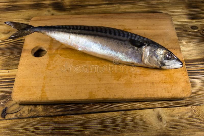 Salted scomber fish on cutting board. Whole mackerel on wooden table stock image