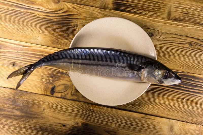 Salted scomber fish on a plate stock images