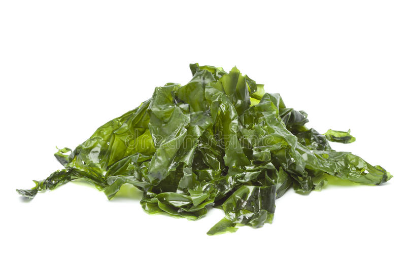 Salted sea lettuce royalty free stock photo
