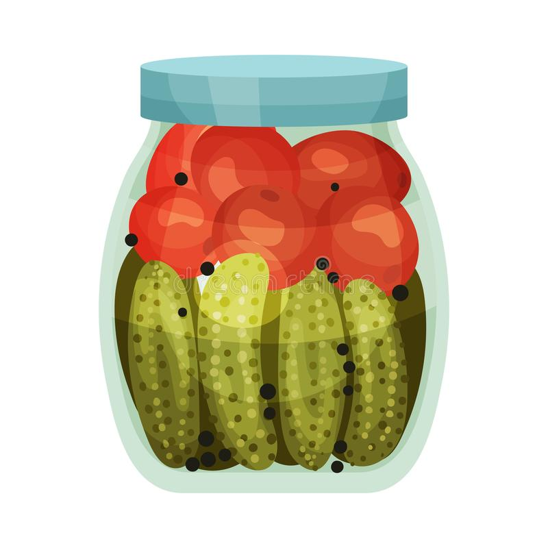 Salted tomatoes and cucumbers are arranged in rows. Vector illustration on white background. Salted tomatoes and cucumbers are arranged in rows in a glass jar stock illustration