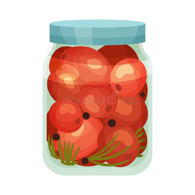 Salted tomatoes in a jar. Vector illustration on white background. Closed jar with pickled tomatoes. Vector illustration on white background royalty free illustration
