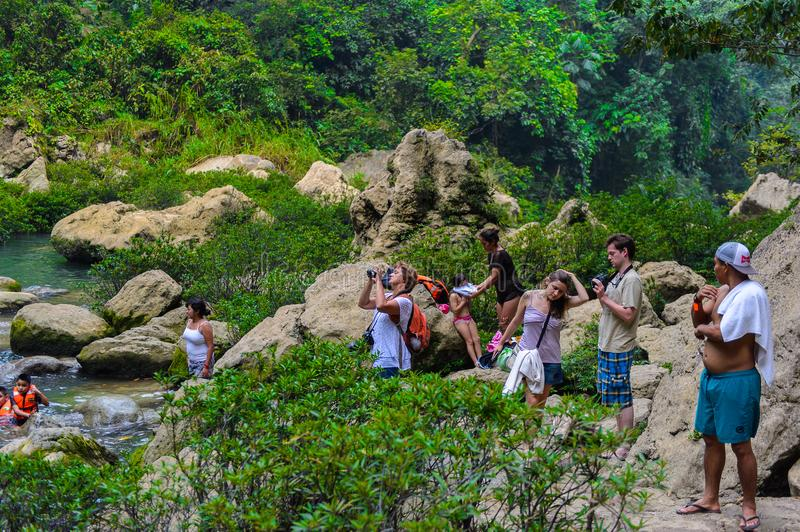 Cascada de Misol-Ha, a waterfall in the jungle of Chiapas, Mexi royalty free stock photography