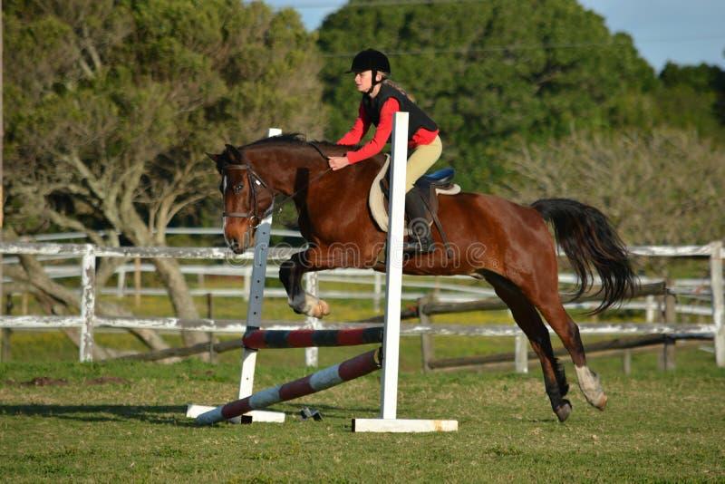 Salto de la demostración del caballo y de la muchacha imagen de archivo