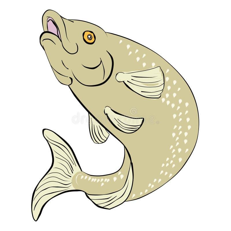 Salto de los pescados de la trucha libre illustration