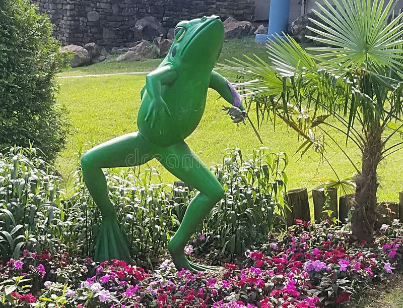 Salto del froggy de la sensaci?n fotografía de archivo libre de regalías