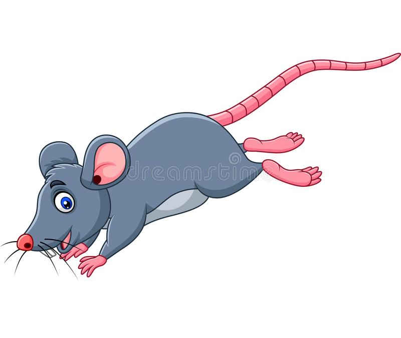 Salto engraçado do rato dos desenhos animados ilustração do vetor