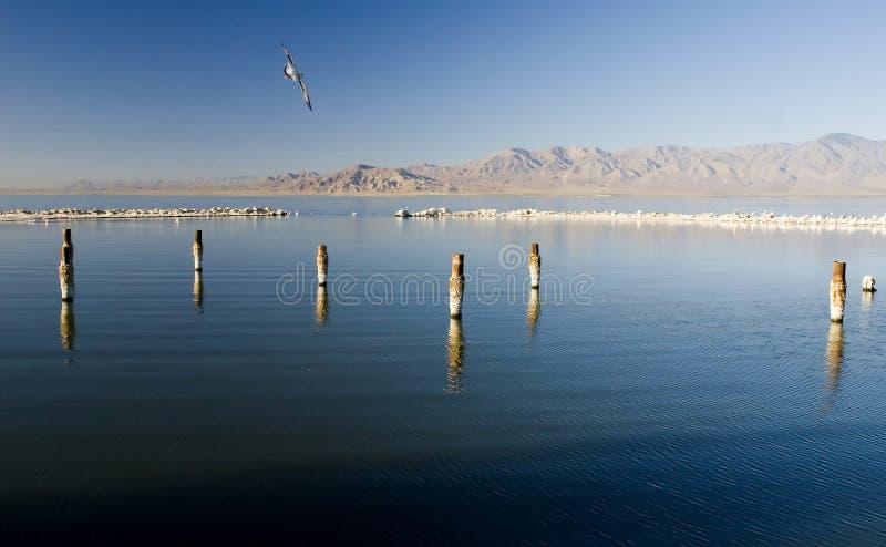 Download Salton Sea California stock photo. Image of disaster, ecological - 7686224