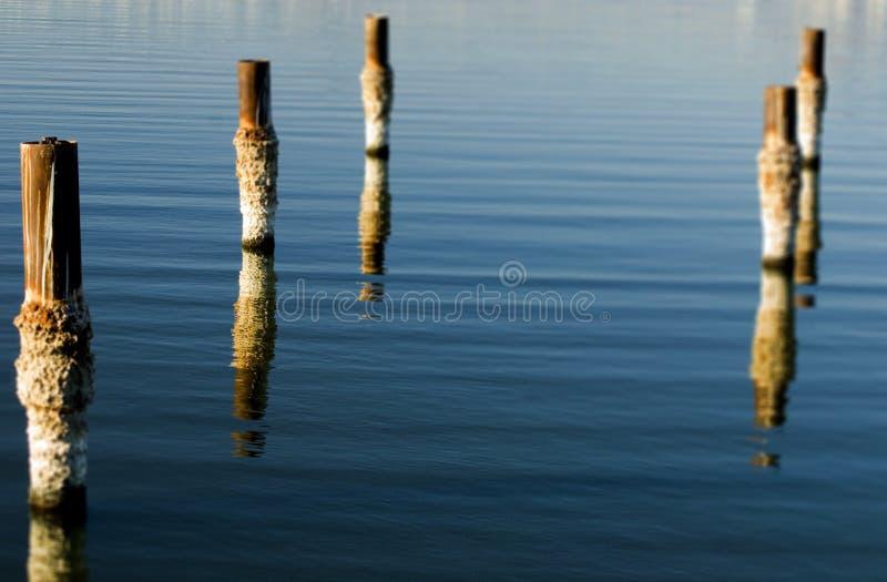 Download Salton Sea Pilings stock photo. Image of ruins, ecological - 7686218