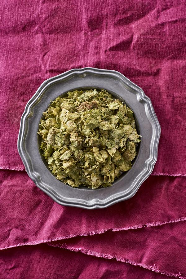 Saltos enteros secados usados en la cerveza que elabora lupulus del Humulus imagen de archivo libre de regalías