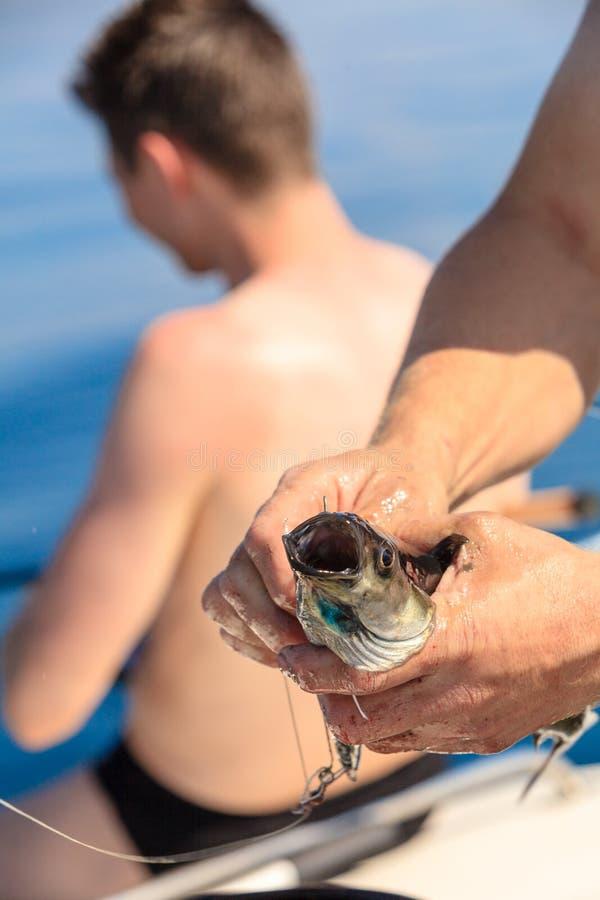 Saltwater που αλιεύει - ψάρια εκμετάλλευσης ψαράδων στοκ εικόνες