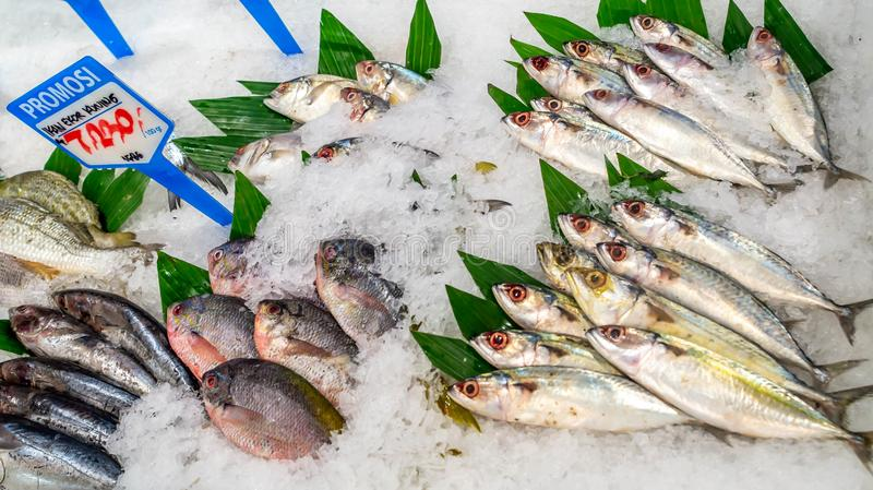 Saltwater fish sold at groceries store. Saltwater fish covered with ices sold with special prices at a store in Indonesia stock photos