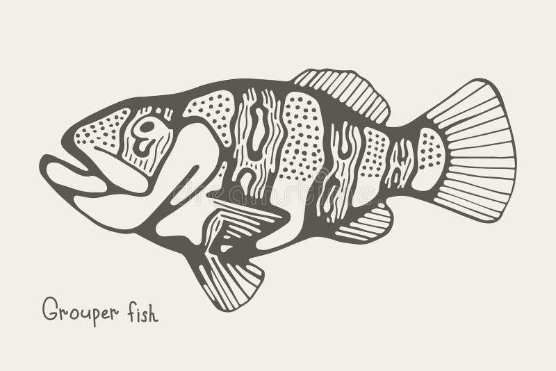 Saltwater grouper ψαριών εικόνα απεικόνισης διανυσματική απεικόνιση