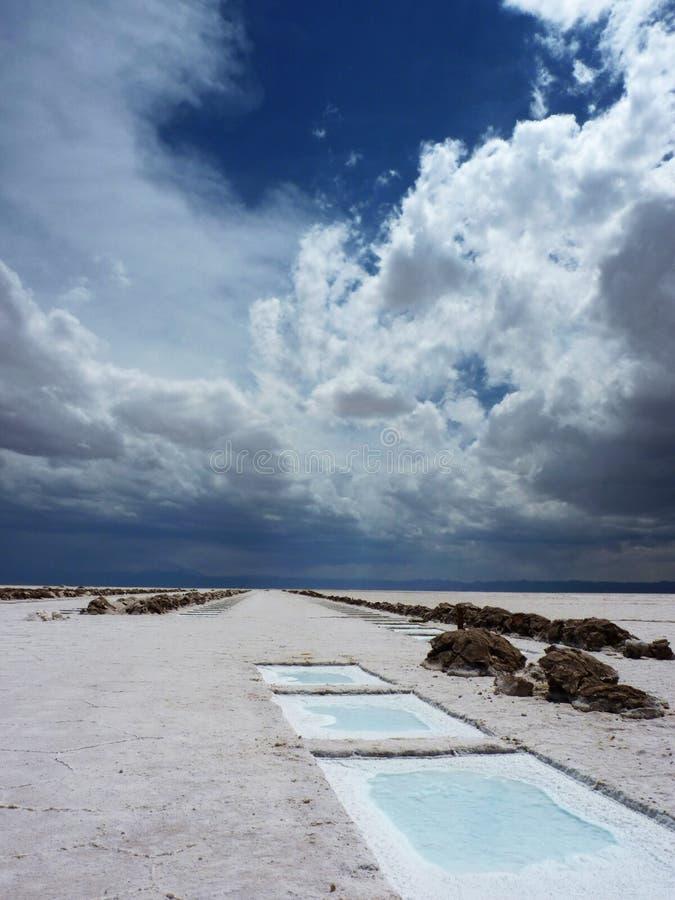 Salty desert royalty free stock image