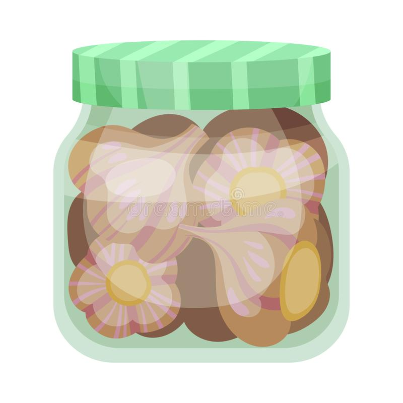Salty heads of garlic. Vector illustration on white background. Salted heads of garlic in a glass jar with a green lid. Vector illustration on white background vector illustration