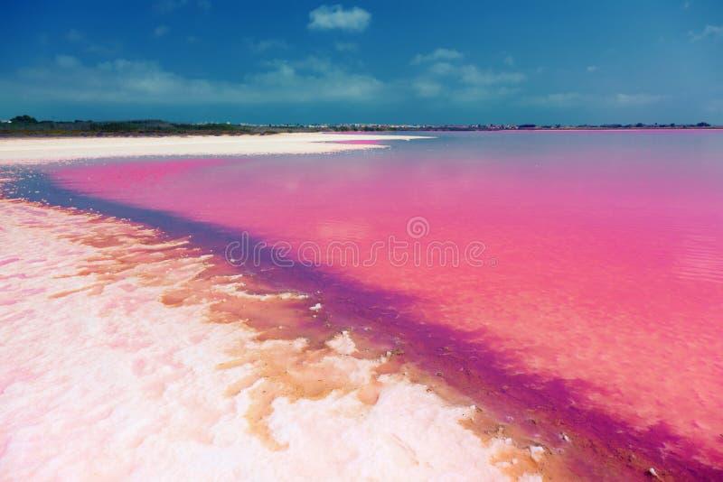 Salty lake shore stock photos