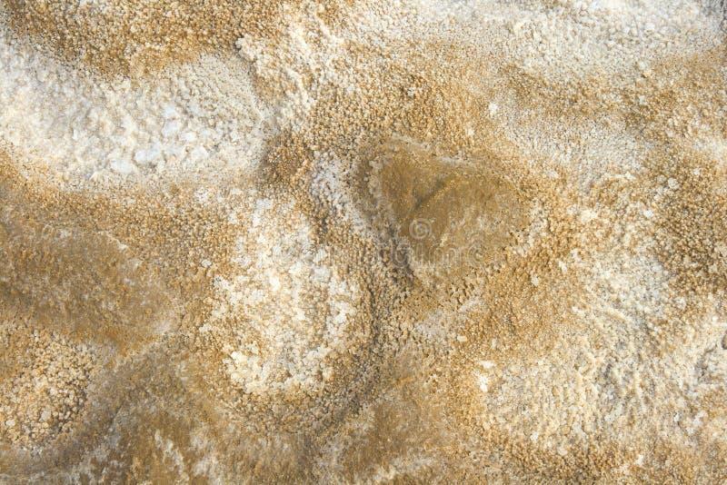 Download Salty land stock image. Image of environment, brown, lake - 27854861