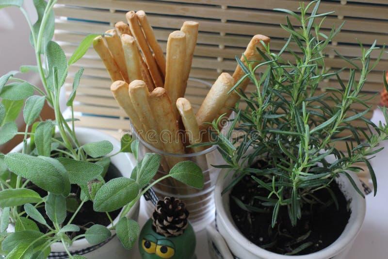 salud, comida, verde, verduras, vegano, pepino, cebolla, cebolletas, ajo, sistema de cebolla, hierbas, eneldo, top, top del perej foto de archivo libre de regalías