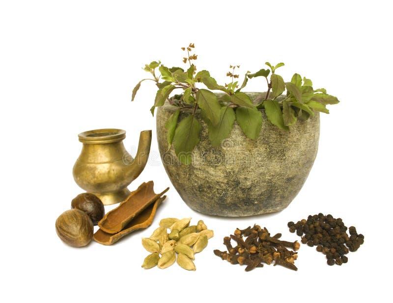 Salud natural de Ayurveda imagenes de archivo