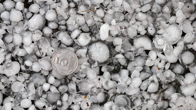 Saludo clasificado con una moneda m?s grande, granizos en la tierra despu?s de la granizada, saludo del gran tama?o fotografía de archivo libre de regalías
