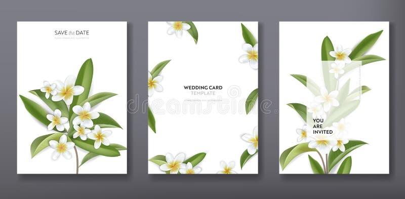 Saludo de moda tropical floral minimalista o casarse el diseño de la plantilla de la tarjeta de la invitación, sistema del cartel libre illustration