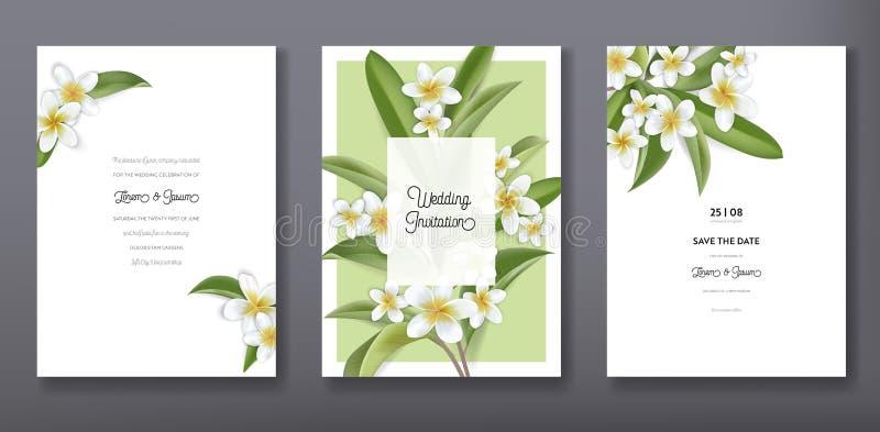 Saludo de moda tropical floral minimalista o casarse el diseño de la plantilla de la tarjeta de la invitación, sistema del cartel ilustración del vector