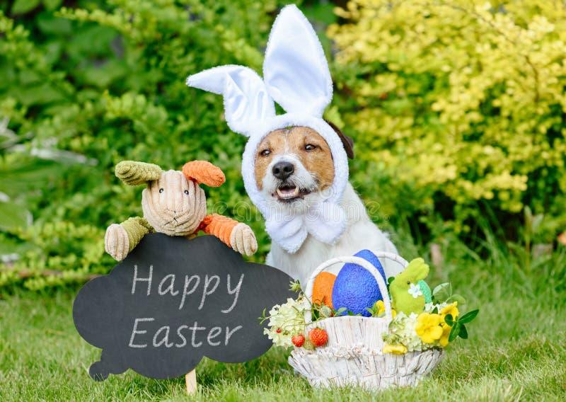 Saludo de Pascua con tres conejitos, la cesta de huevos coloreados y la pizarra imagen de archivo libre de regalías