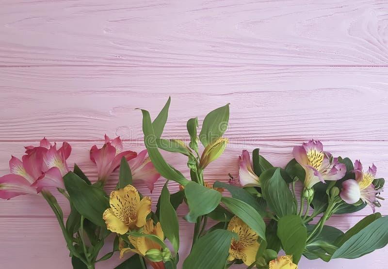 Saludos del vintage de la frescura del aniversario del Alstroemeria en un fondo rosado del marco de madera imagenes de archivo