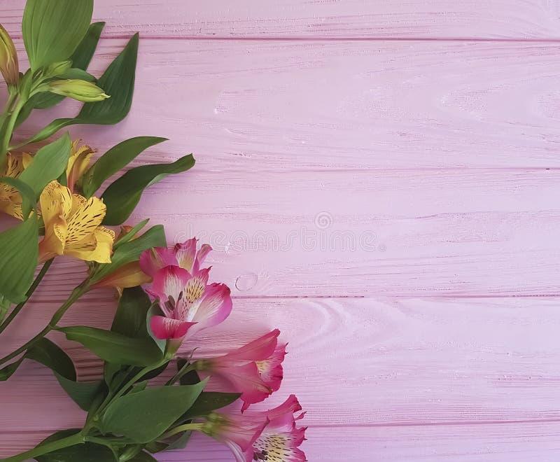 Saludos románticos florecientes del vintage del aniversario del Alstroemeria en un fondo rosado del marco de madera fotos de archivo libres de regalías