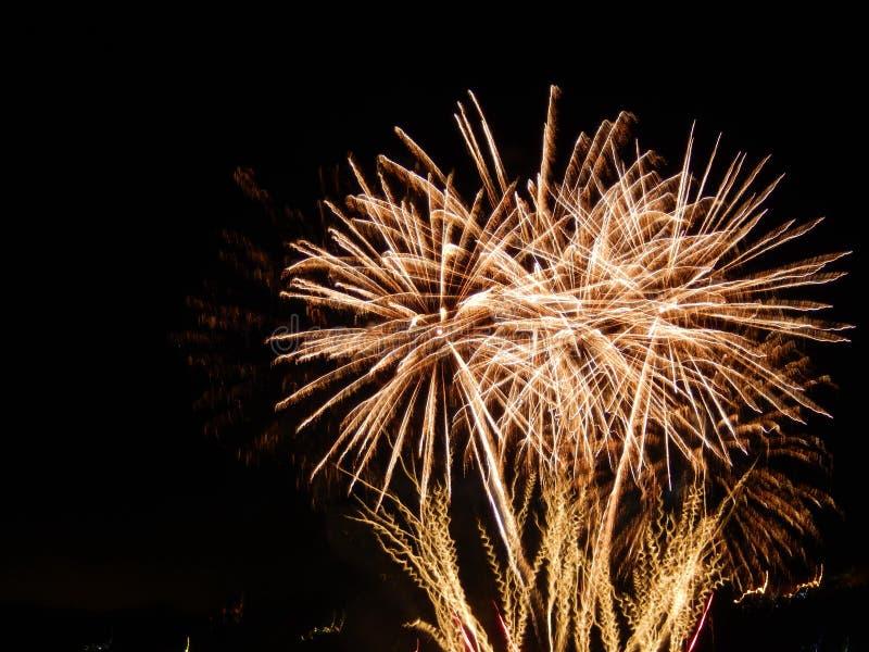 Salut de célébration photos libres de droits