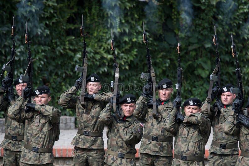 Salut de soldats d'honneur photos libres de droits