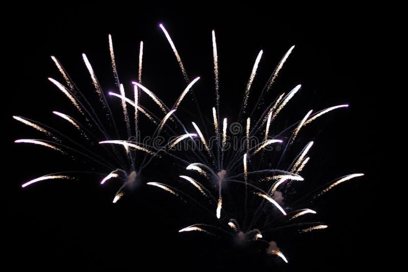 Salut, fajerwerki W nocnym niebie Pirotechniczny przedstawienie na wakacje Wybuch wiele petardy obrazy stock