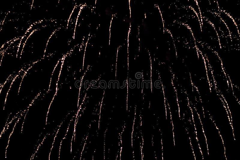 Salut, fajerwerki W nocnym niebie Pirotechniczny przedstawienie na wakacje Wybuch wiele petardy zdjęcia royalty free