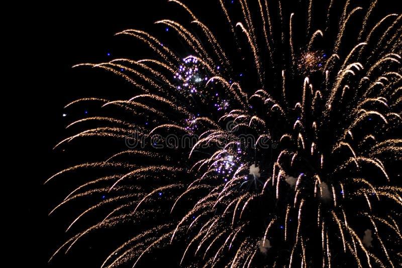 Salut, fajerwerki W nocnym niebie Pirotechniczny przedstawienie na wakacje Wybuch wiele petardy zdjęcie royalty free