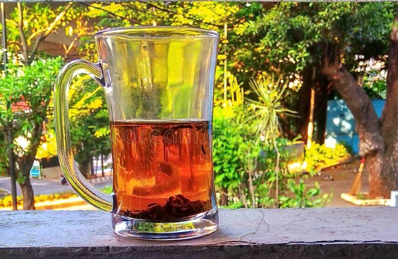 salute del tè fotografia stock libera da diritti
